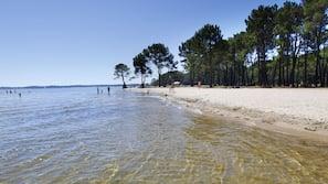 Plage privée à proximité, sable blanc, chaises longues, pêche sur place