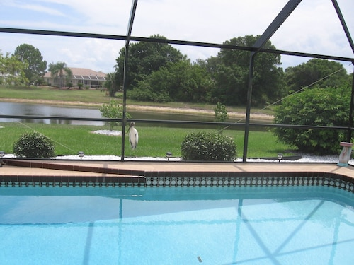 Exclusive Pool Villa Directly on the Lake With Wonderful Animal and Bird Life Great