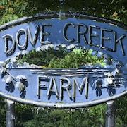 Relax and Revive on 40 Acres of Privacy on the Dove Creek