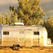 Sanitized Silver Fox: Airstream in an Orchard 15 Minutes From Downtown Durango