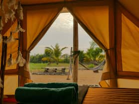 Salt Field Glamping