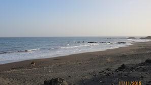 Na praia, toalhas de praia