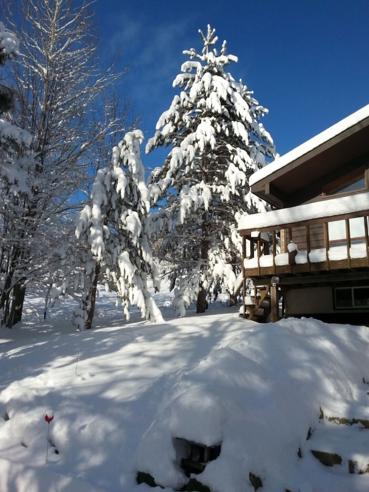 Snow and Ski Sports, Gryffin Ridge- The Magic Forest, Huntsville! Sleeps 2 Adults and 2 Children