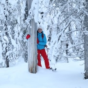 Lumi- ja hiihtourheilulajeja