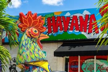 528 Southwest 9th Avenue, Miami, Florida, 33130, United States.