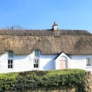 Original Irish Thatched Cottage With Modern Twists