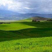 从住宿可欣赏陆地景观