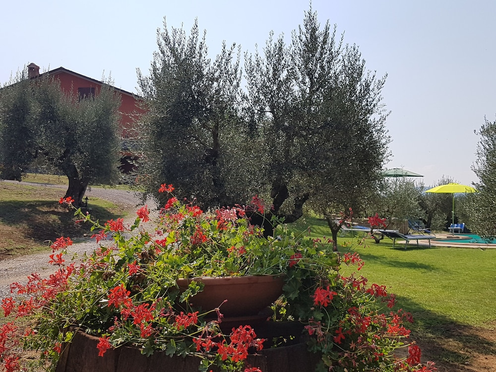 Property Grounds, Villa GLI Olivi 10 Minutes From Panicale Special 2020! Perfect FOR 16 PX