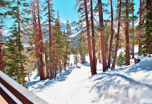 Ski-in, Ski-out Updated Mammoth Condo With Amazing Views