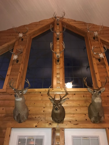 , Antler INN Cabin AT Starved Rock.... Beautiful Updated 2,800sq ft Luxury Cabin