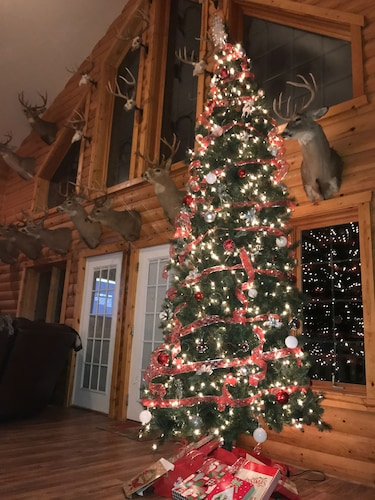 Interior, Antler INN Cabin AT Starved Rock.... Beautiful Updated 2,800sq ft Luxury Cabin