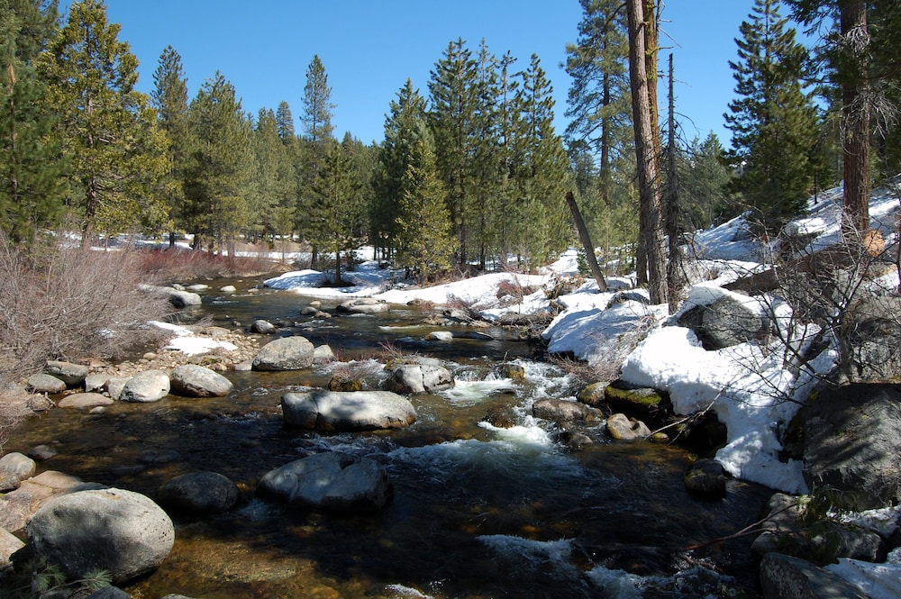 Property Grounds, Rustic Luxury Minutes to Dodge Ridge Ski Resort and the Sierra Mountain's Fun!