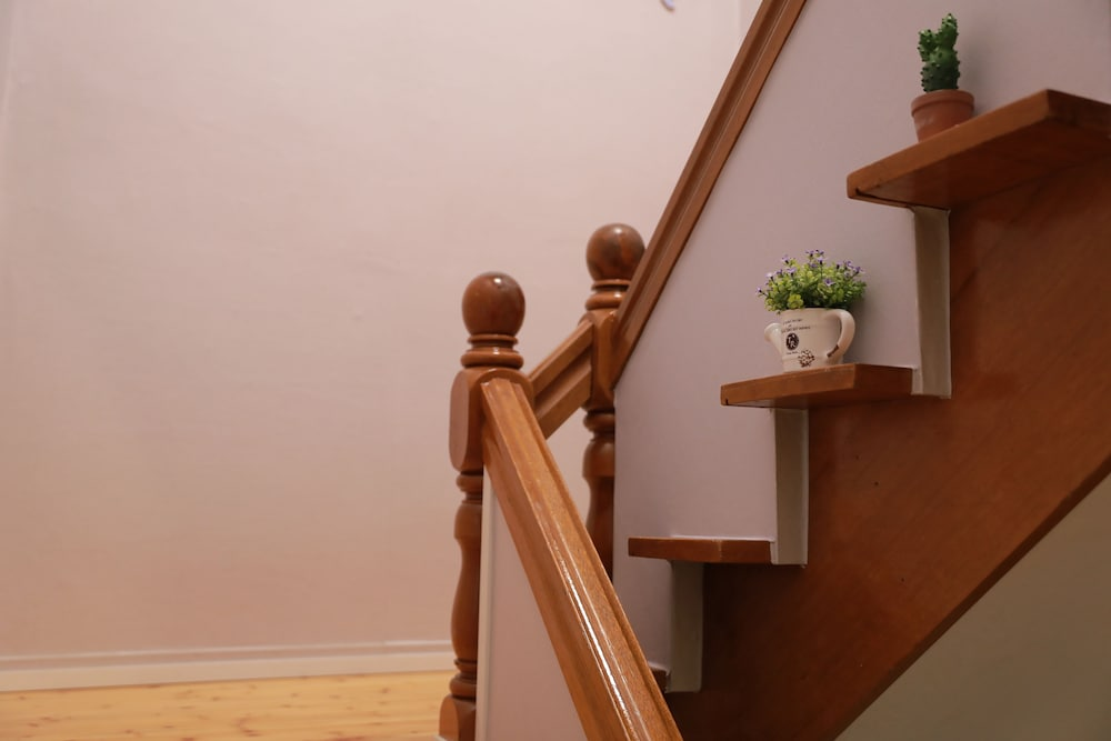 Staircase, DAOL guest house