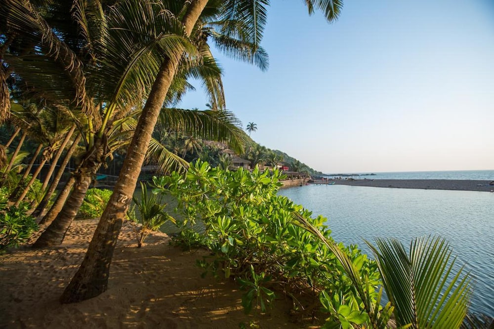 View from Property, Blue Lagoon Resort Goa