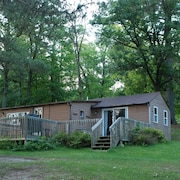 2BR Cabin Nestled in Towering Pines on a Quiet Lake. Pets Accepted!