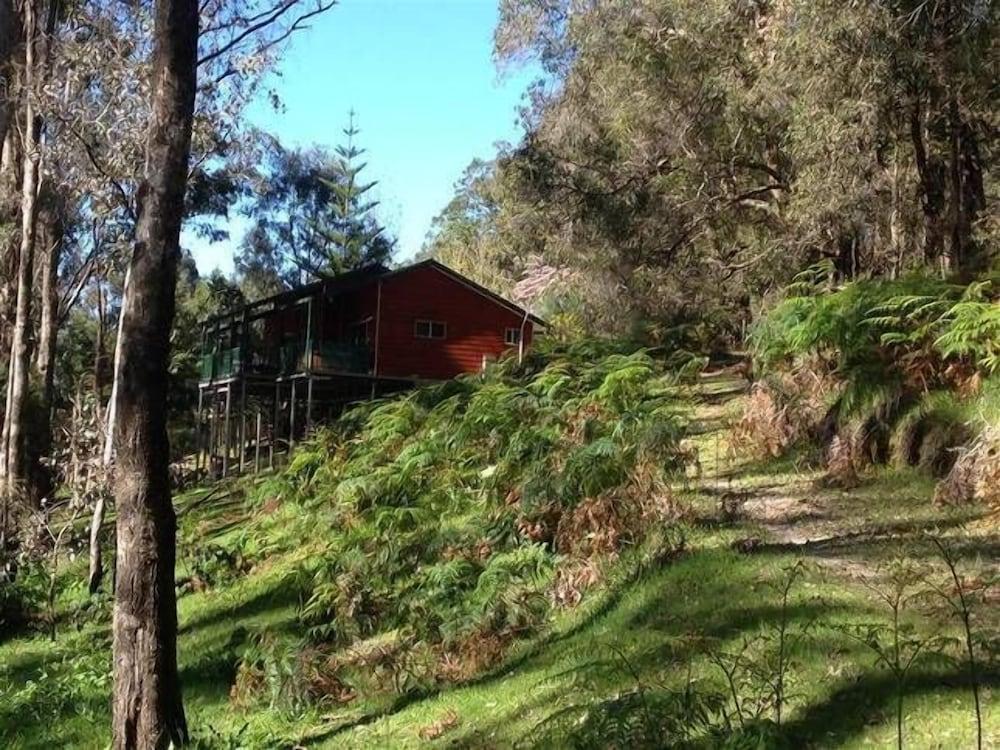 Koala Cottage at Fern Gulley Retreat
