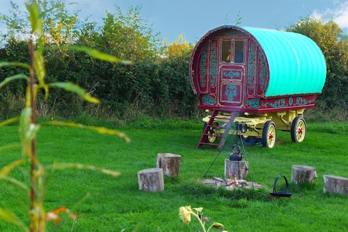 Stay in a Traditional Gypsy Caravan Close to Glastonbury in a Private Orchard