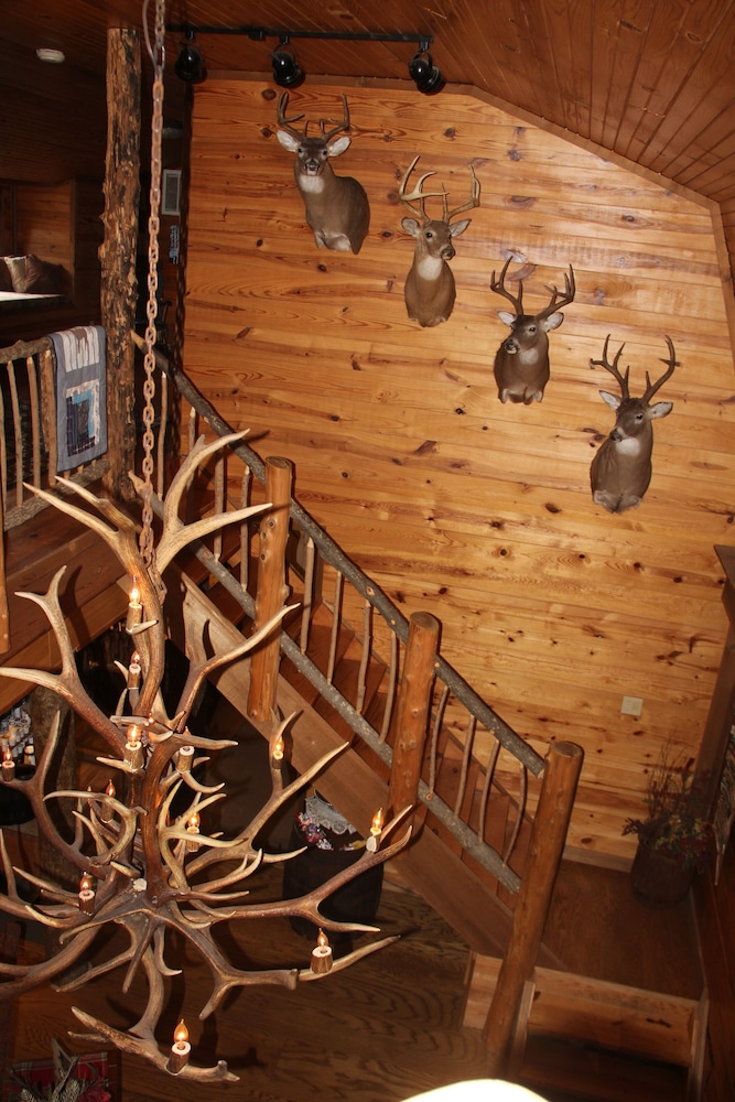 Interior, Secluded Rustic Cabin W/wifi on 160 Acres Near Illinois River & Lake Tenkiller