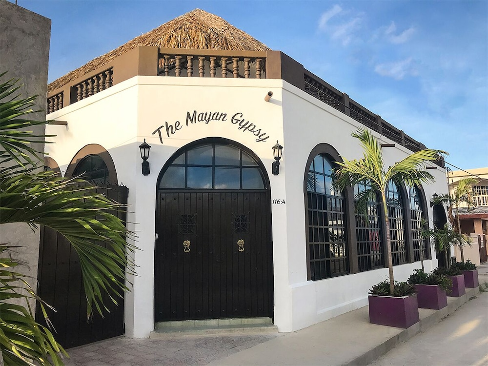 Exterior, Gorgeous art Retreat! Just Steps 2 Progreso Beach & Malecon Restaurants