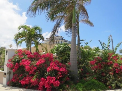 Property Grounds, Cruzan Sands Villa! Beachfront! Great for Couples! Fabulous Awesome Views!