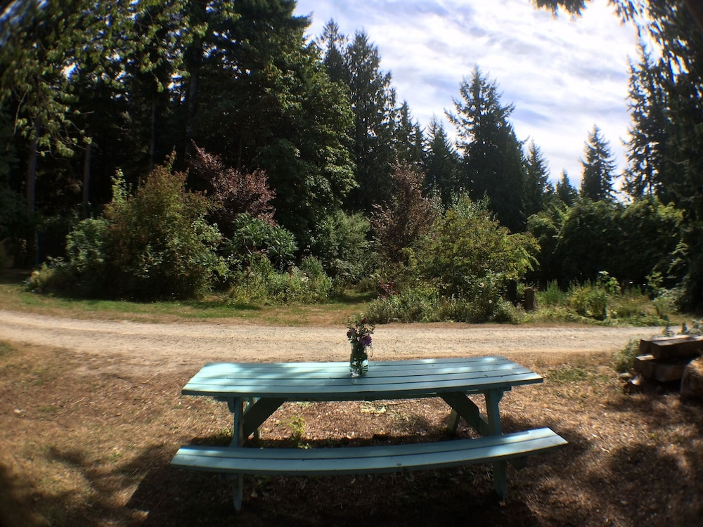 Property Grounds, The Micro Cabin In Roberts Creek - 2 Minutes From the Beach!