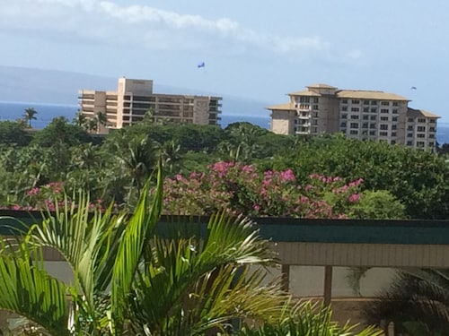 Kaanapali 1/4 Acre Private Home, 3 Blks to Beach, AC