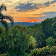 Daintree Manor Bed & Breakfast
