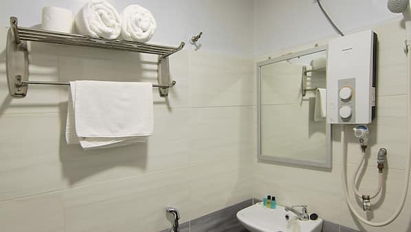 Shower, free toiletries, bidet, towels