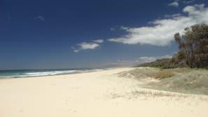 Beach nearby, white sand, fishing