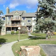 Ski In/out Condo at the top of Avalanche Lift - Hidden Valley 2bdrm, 2 Bath