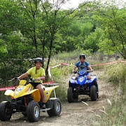 Roller/Moped