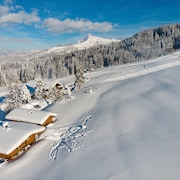 SKI IN / Out! Apartment Directly at the Fleckalm Piste