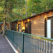 Cabin Near Elkins WV, Hot Tub & Sauna Close to Dolly Sods&otter Creek Wilderness