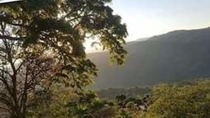Kameruitzicht