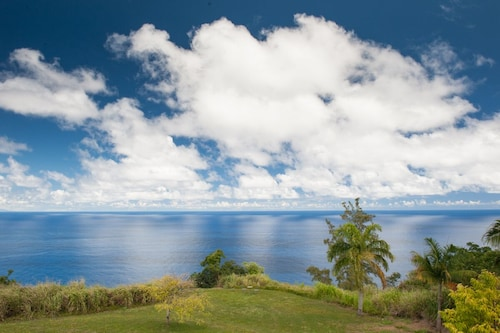 Exotic Orchard on Ocean Cliff! Waterfall/ocean View Takes Your Breath Away!
