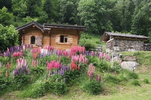 Charming Chalet, Village of Bionnassay - Countries of Mt Blanc- 1300 m Altitude