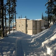 Ski In/ski Out 2 Bedroom - Free Wi-fi & Pet Friendly Too!