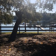 Beautiful Lake Front Property With Fully Furnished Cabins!