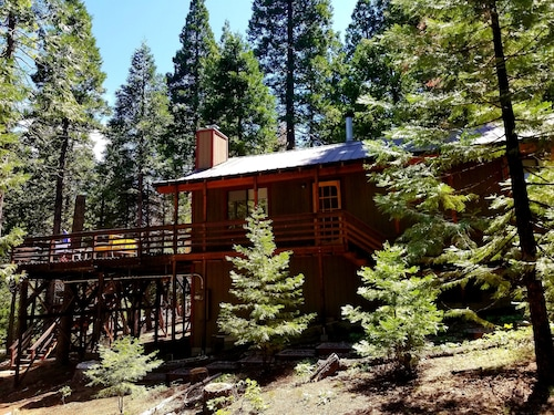 Big Trees Deck. Perfect High Sierra Gateway Cabin!