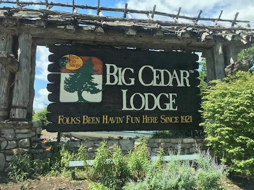 Check Expedia for Availability of Big Cedar Studio