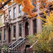 Brooklyn Brownstone Rental