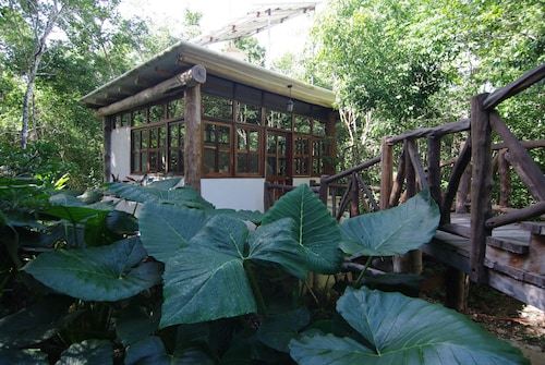 Casita Milagros - A Jungle Tree House