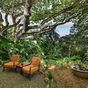 Hale Ulula'au - A Peaceful Forest Retreat