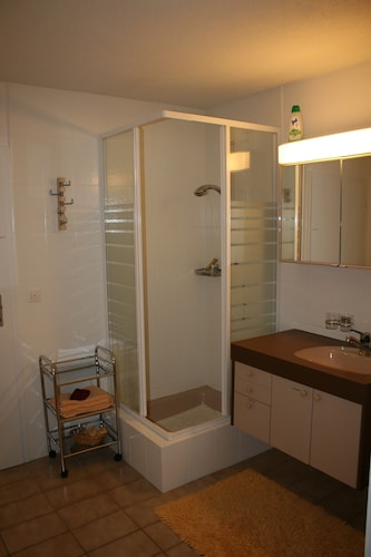 Bathroom, Spacious 1-room Apartment With Kitchen, Separate Bathroom With Shower