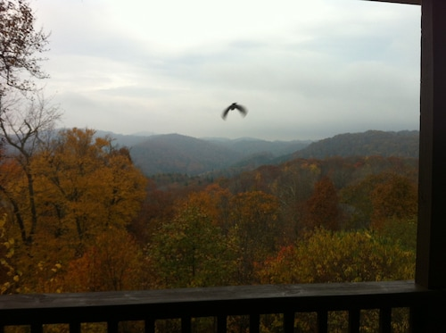 Mountainside Cottage! Great Views, Close to Appalachian Ski Mtn, Free Wifi!
