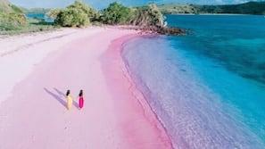 On the beach, sailing, fishing