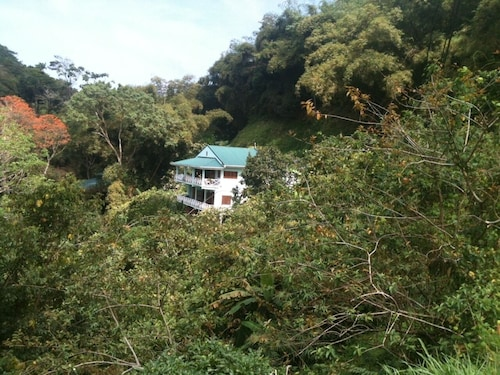 The Charlotteville Lookout - Oceanview Mountain Top Bird Watchers Paradise