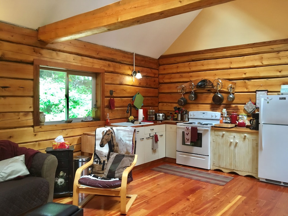 , Log Cabin Fully Equipped. Couples, Families or Locum Professionals. Dogs Welcome