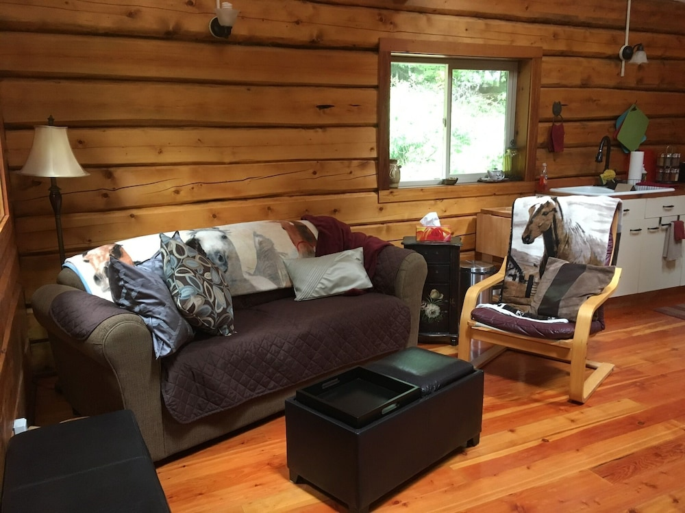 Living Room, Log Cabin Fully Equipped. Couples, Families or Locum Professionals. Dogs Welcome