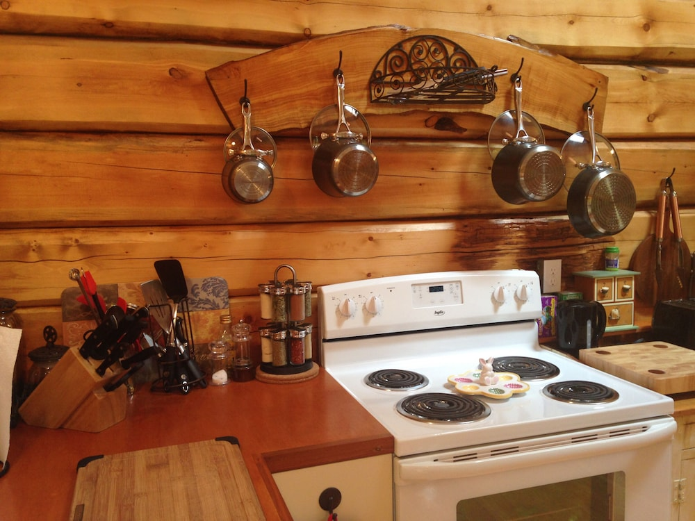 Private Kitchen, Log Cabin Fully Equipped. Couples, Families or Locum Professionals. Dogs Welcome